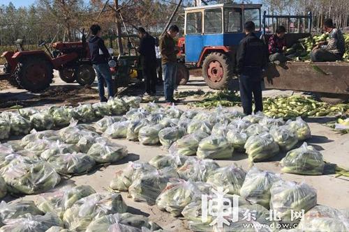 构建社会扶贫大格局 破解农产品